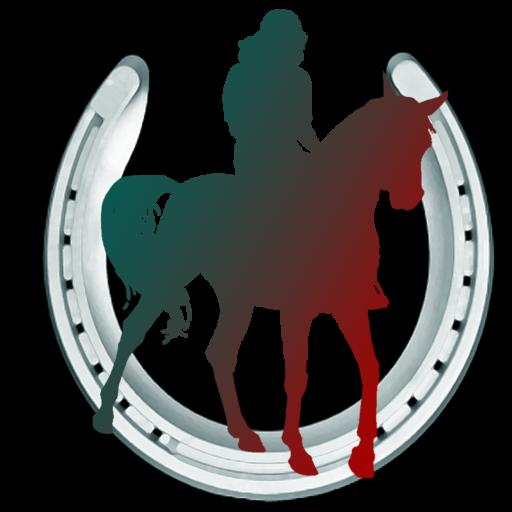 Верховая езда в Казани, катание на лошадях, конные прогулки